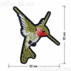 Патч Тропическая Колибри