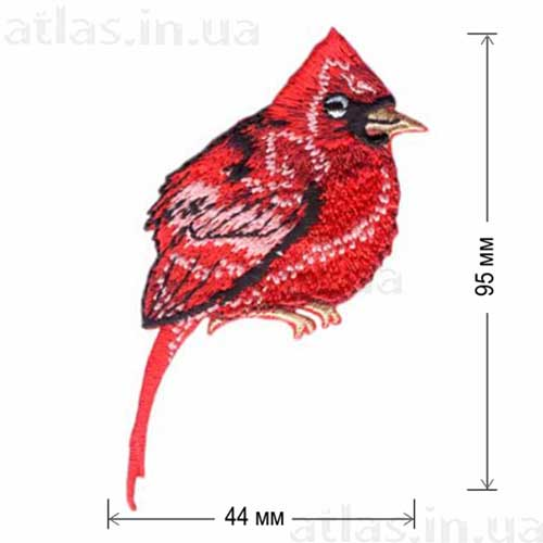 нашивка птичка кардинал