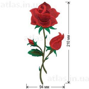 большая роза на одежде