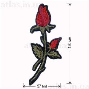 роза красный бутон