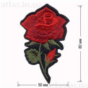 роза красная большой бутон