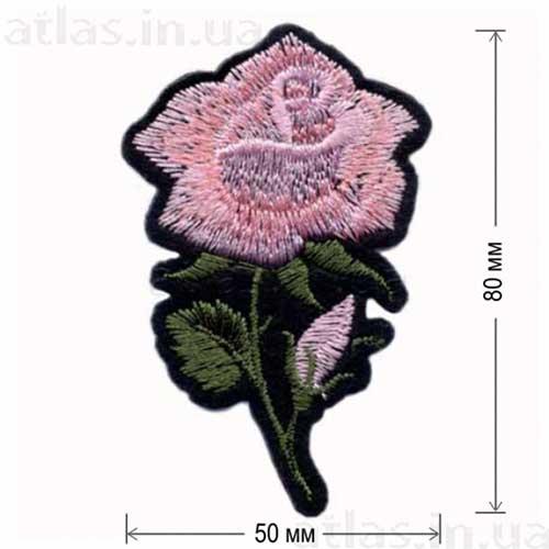 роза розовая большой бутон