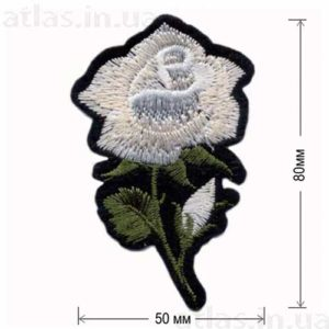 роза белая большой бутон