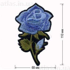 роза голубая большой бутон