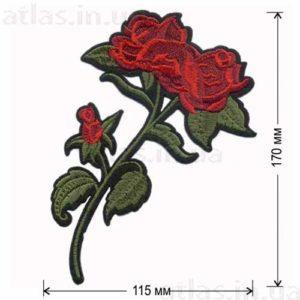 роза красная ветка