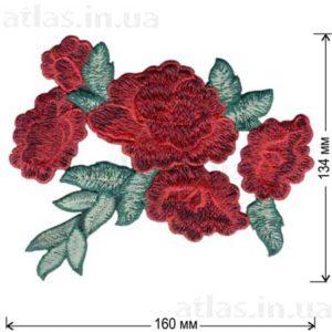красная роза 5 бутонов
