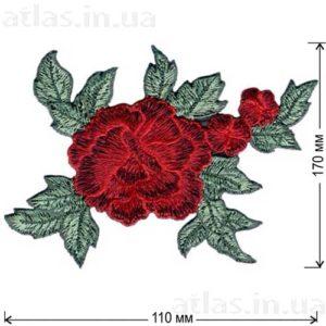 роза три бутона