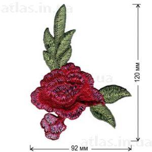 роза красная уголок