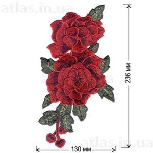 Роза красная четыре бутона