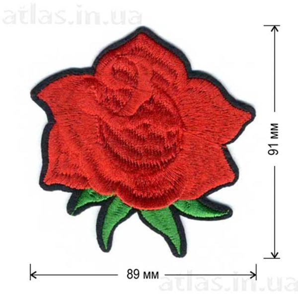 роза красная бутон