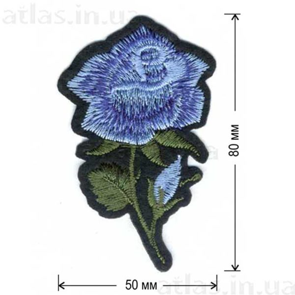 роза голубая два бутона