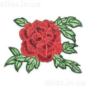 роза на сетке