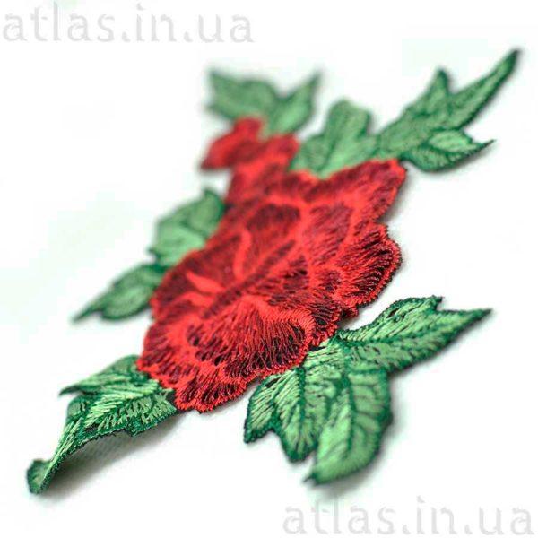 красная роза на сетке три бутона