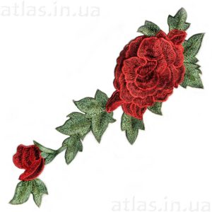 красная роза на сетке 2 бутона