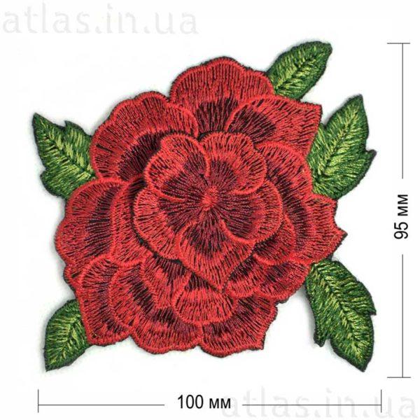 красная роза бутон