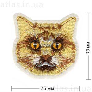 бежевый кот нашивка на белом фоне 75х73 мм